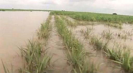 Povodné v Pákistánu