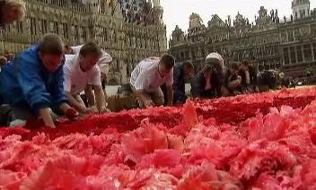 Květináři dostali plán s barevnými nákresy
