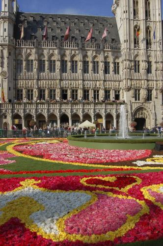 Bruselské Velké náměstí ozdobil květinový koberec