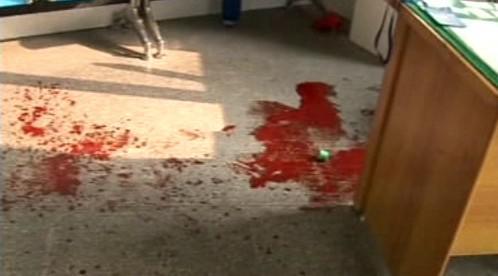 Vraždy v čínské školce