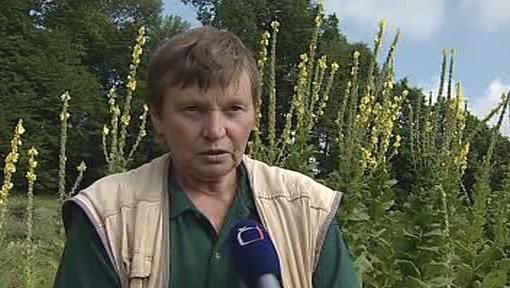 Biofarmářka Jaroslava Marková