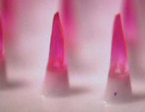Mikroskopické jehličky na speciální očkovací náplasti