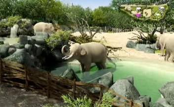 Nový areál nabídne slonům přirozenější prostředí