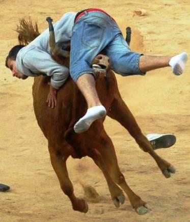 Býk nabral mladíka na rohy