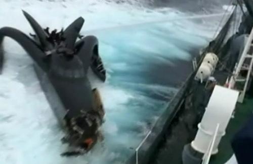 Střet člunu Ady Gil s velrybáři