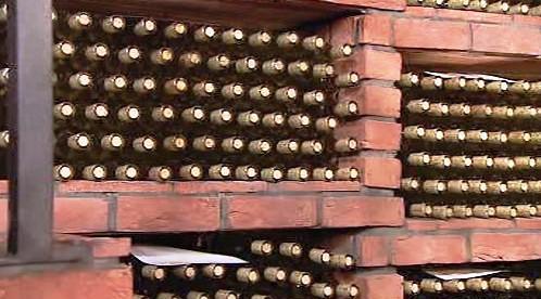 Sbírka vín