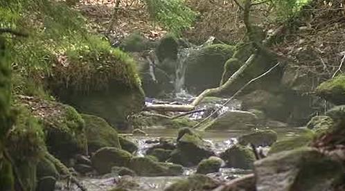 Karlovarská příroda