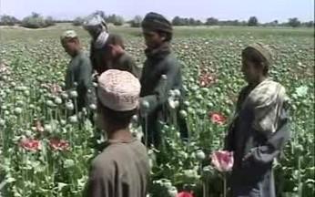 Afghánská pole