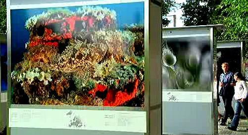 Výstava velkoformátových fotografiích