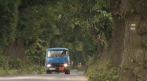 Náklaďák projíždí stromořadím