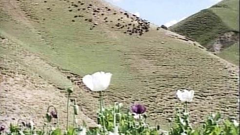 Afghánská krajina