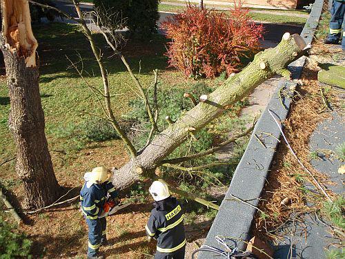 Hasiči odklízejí spadlé stromy