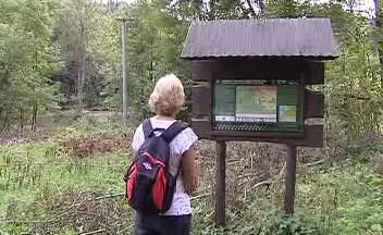 Turistická trasa
