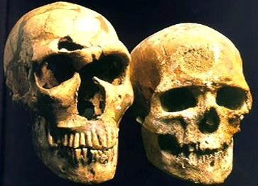 Lebky neandertálce a moderního člověka