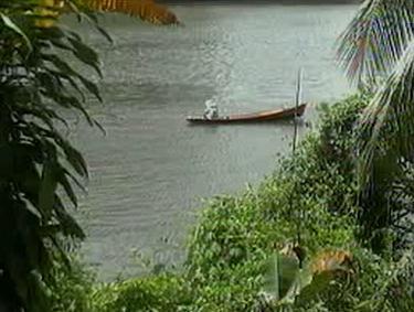 Příroda na Borneu
