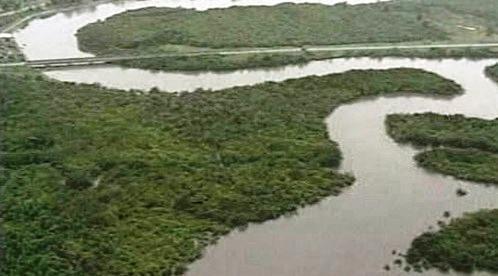 Delta řeky Niger