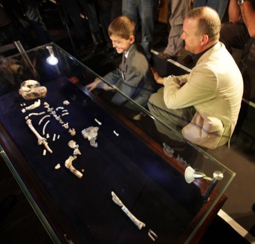 Kostra australopiteka sediba