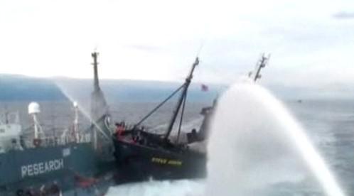 Srážka japonských rybářů s ochránci velryb