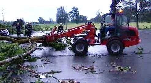 Odklízení spadlého stromu