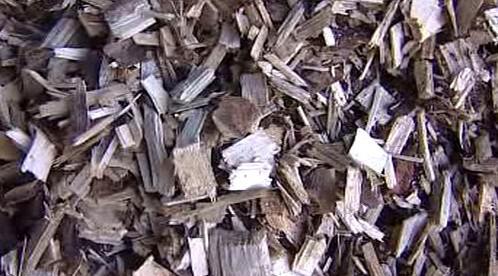 Dřevní hmota