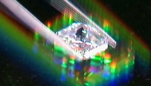 Tříkarátový diamant, který skončil v útrobách psa