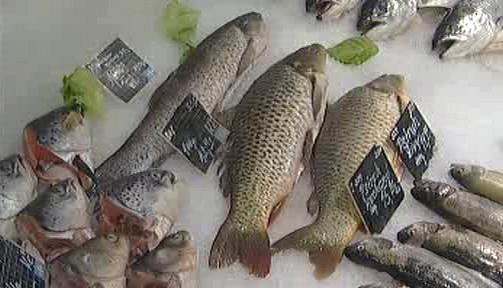 Češi málo nakupují čerstvé ryby