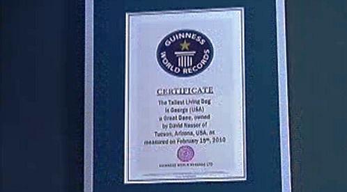 Certifikát o rekordu pro nejvyššího psa světa