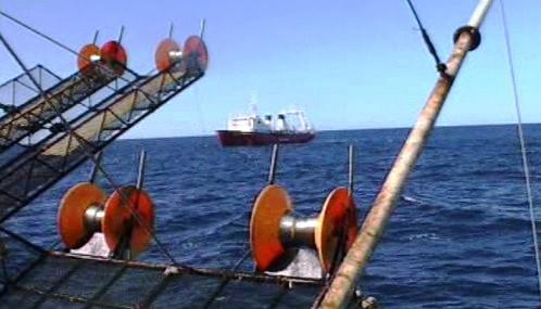 Výzkum u Falklandských ostrovů