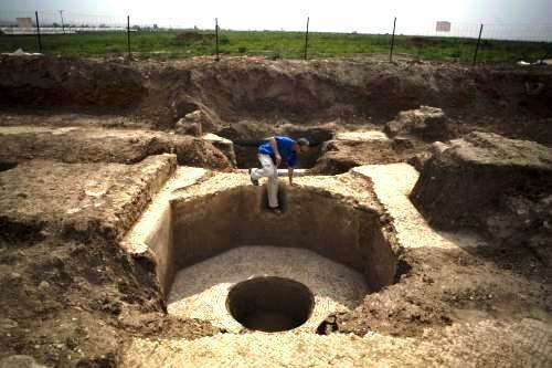Lis na víno starý 1400 let