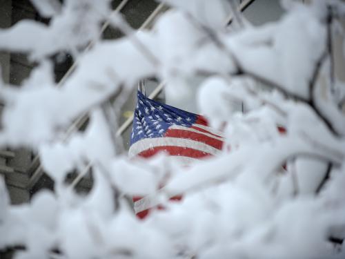 Sněhová kalmaita v USA
