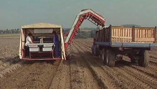 Čeští zemědělci