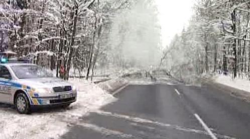 Situaci na silnicích komplikují popadané stromy
