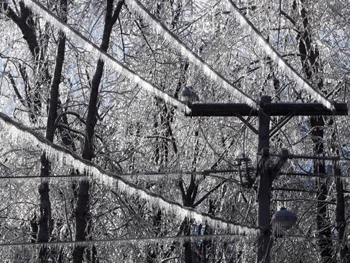 Zamrzlé elektrické vedení