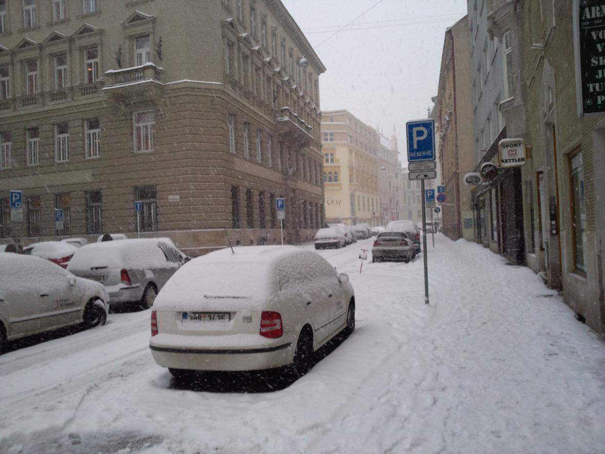 Sněhová kalamita v Brně