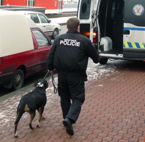 Policista s odchyceným psem