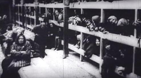 Utrpení v koncentračním táboře