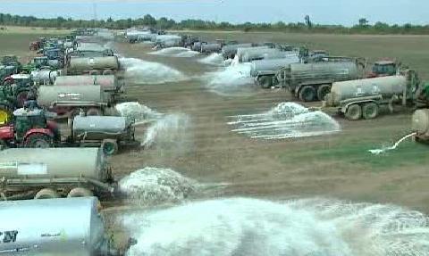 Vylévání mléka na pole