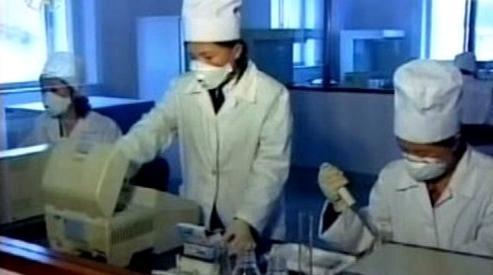 Prasečí chřipka v KLDR