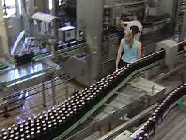 Stáčecí linka v pivovaru