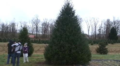 Strom pro Obamovi z farmy ve Virginii