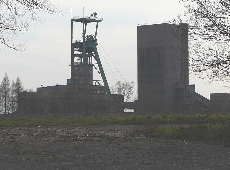 Těžba