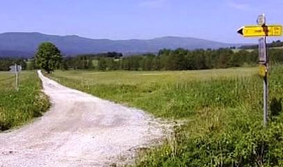Přírodní lokalita