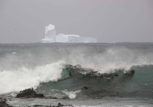 Ledovcová kra