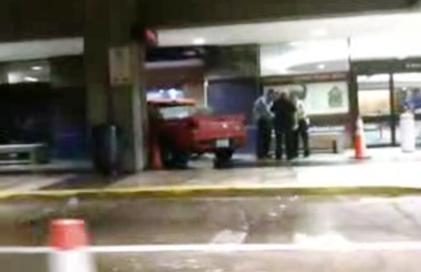 Kuriózní nehoda v akváriu v Tampě