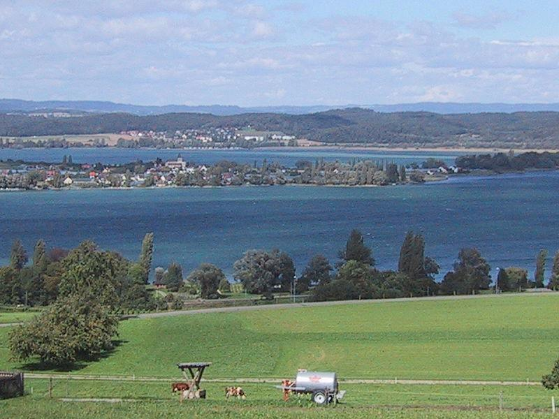 Ostrov Reichenau