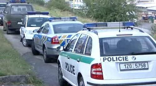 Policejní auta