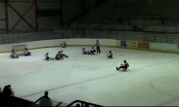 Kolínský tým sledge hokeje