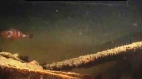 Snímky vraku lodi