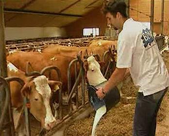 Vylévání mléka