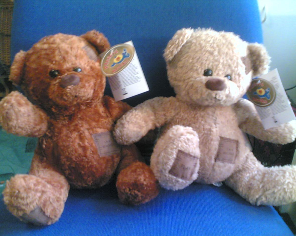 Plyšový medvídek zakázaný ČOI